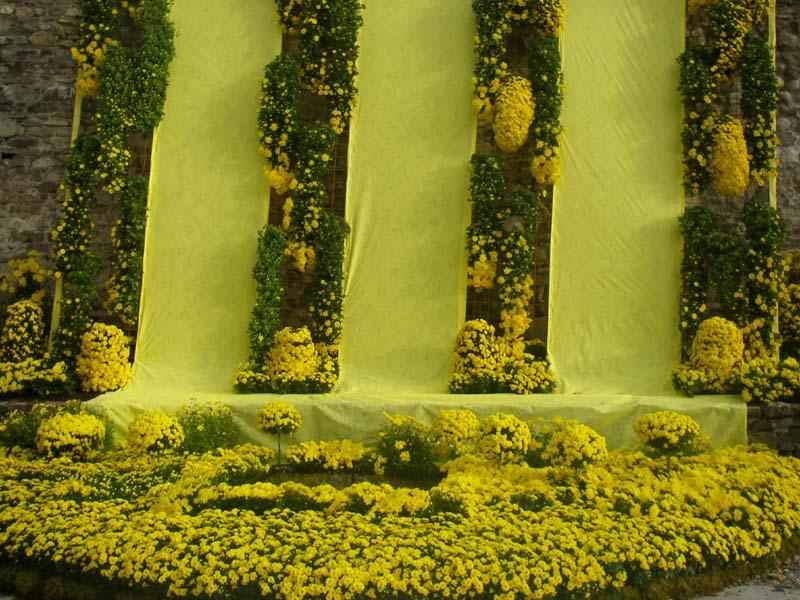 Cascade de jaune